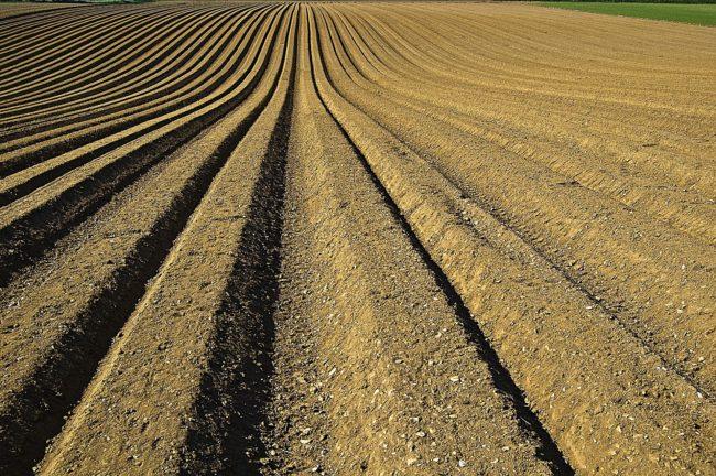 crop-1149914_1920